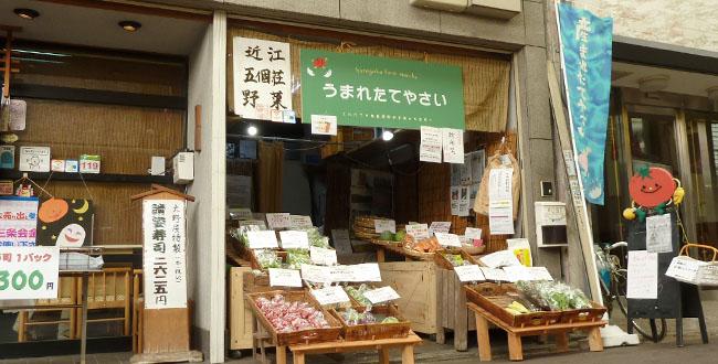 京都三条会商店街|晴れやかファーム うまれたてやさい