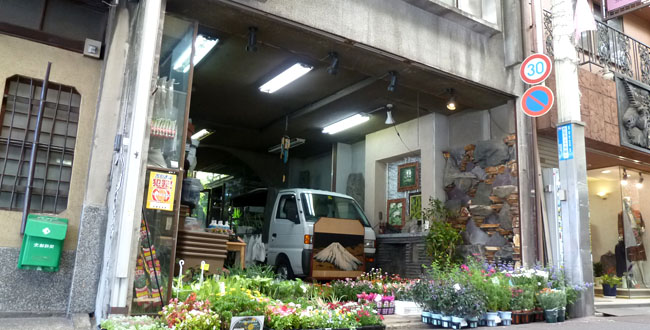 京都三条会商店街|植木・萬樹園